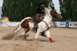 ranc_dalu_22