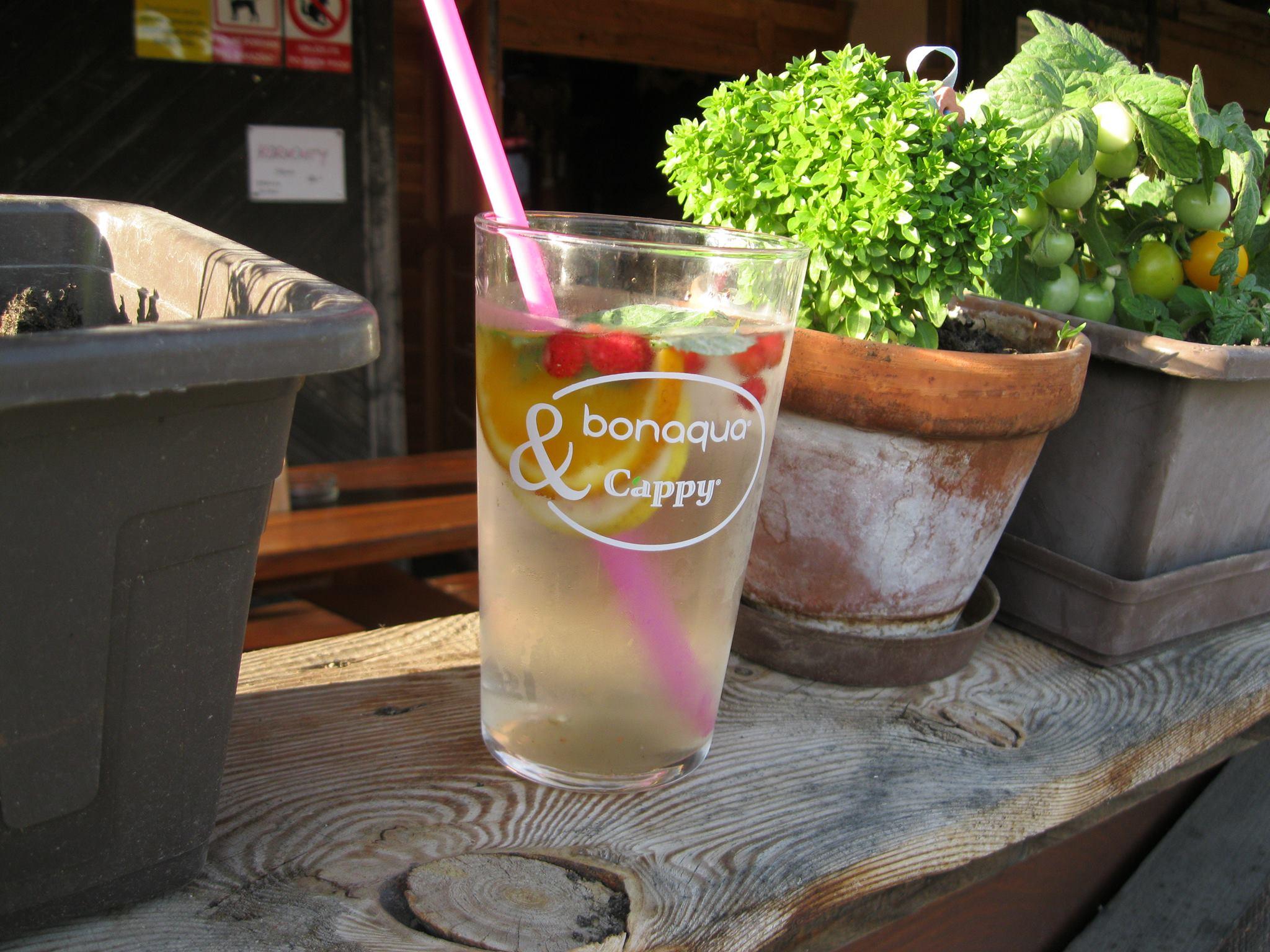 domáci limonáda