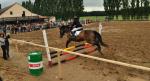 sportovni-den-s-konmi7_30