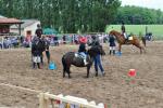 sportovni-den-s-konmi7_62
