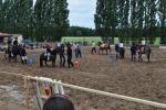 sportovni-den-s-konmi7_63